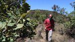 Aquí la tierra - Visitamos un bosque reforestado