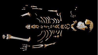 Los neandertales crecían a un ritmo similar a los humanos