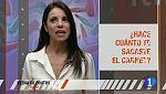 'Seguridad Vital' - 'Cuestionario' - Elena de Frutos