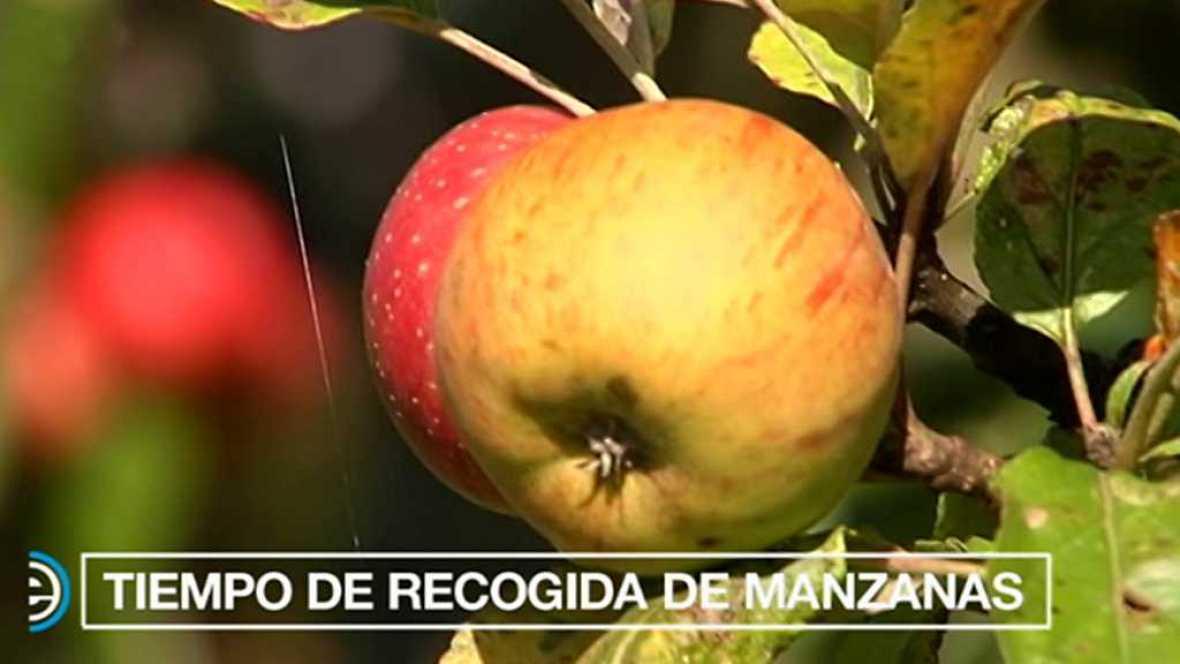 España Directo - 02/10/17 - ver ahora