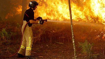 Galicia - La Xunta confirma que los incendios que amenazan Vigo han sido provocados