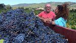 Aquí la tierra - Parte de la viña, vuelve a la viña