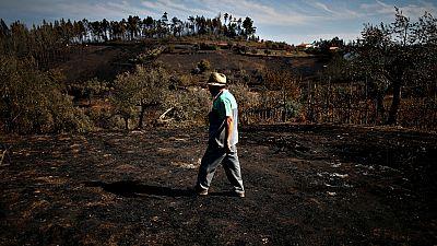 Portugal evalúa los daños causados por los devastadores incendios de los últimos días