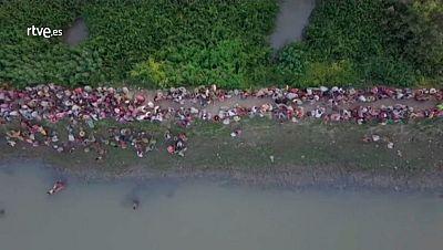 Entre 10.000 y 15.000 refugiados rohinyás han huido a Bangladesh en las últimas 48 horas. Estas imágenes aéreas captadas por el Alto Comisionado de Naciones Unidas para los Refugiados muestra la columna humana que cruza los arrozales para llegar a la