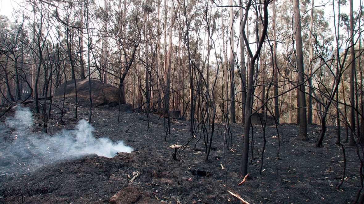 21 incendios siguen activos en Galicia, aunque ninguno amenaza ya a la población