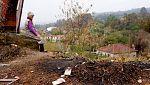 Preocupación por el deterioro de los suelos tras los incendios en Galicia