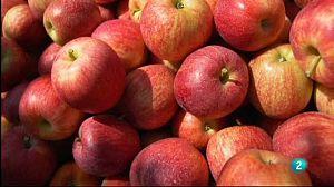 Así empieza: 'El fraude de la fruta falsa'
