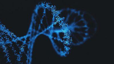 Crean una nueva herramienta para editar el genoma
