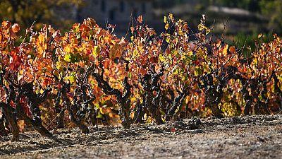 Viento fuerte en el Ebro, los Pirineos y el Ampurdán