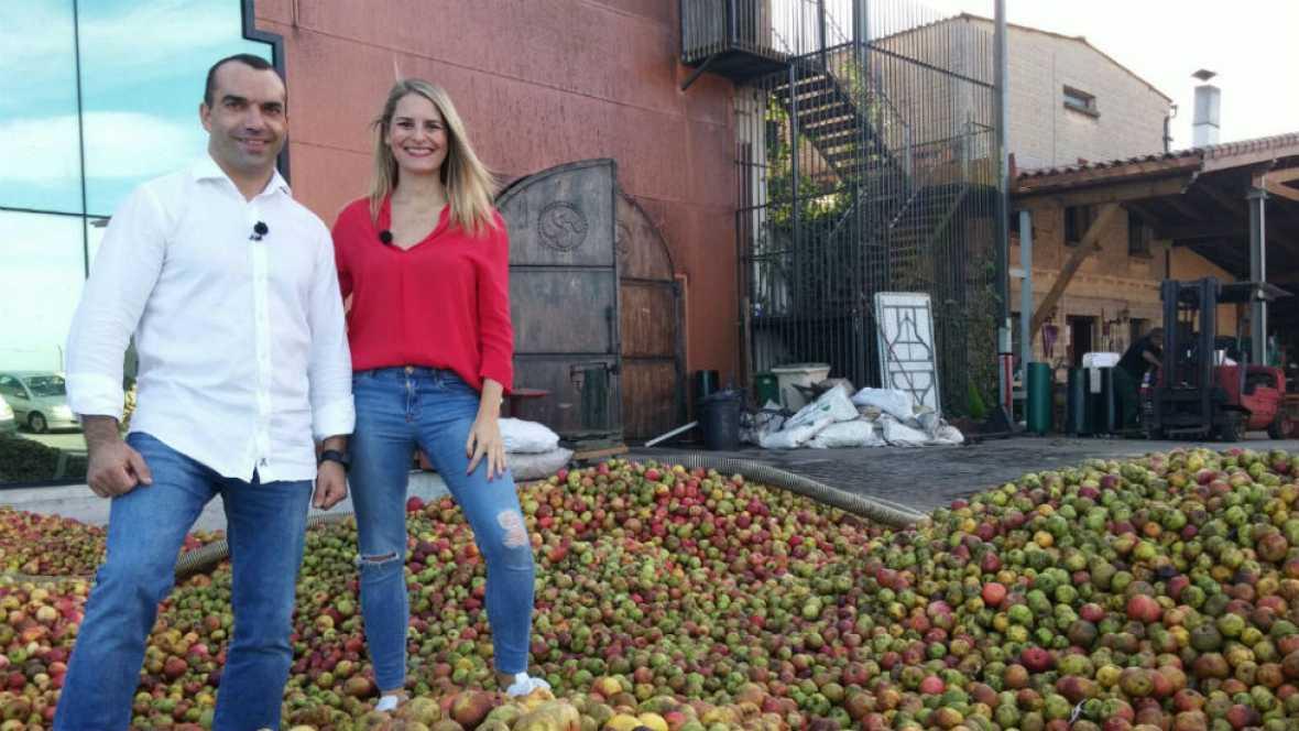 Toneladas de manzanas para sidra