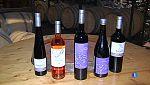 El vi kosher de la cooperativa de Capçanes