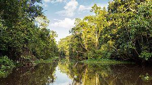 El Amazonas de Oriente: El regalo de la tierra