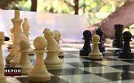 Repor - Tablero busca reyes