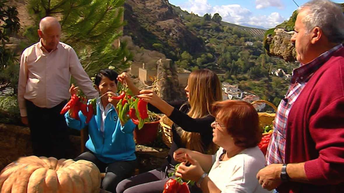 España Directo - 27/11/17 - ver ahora