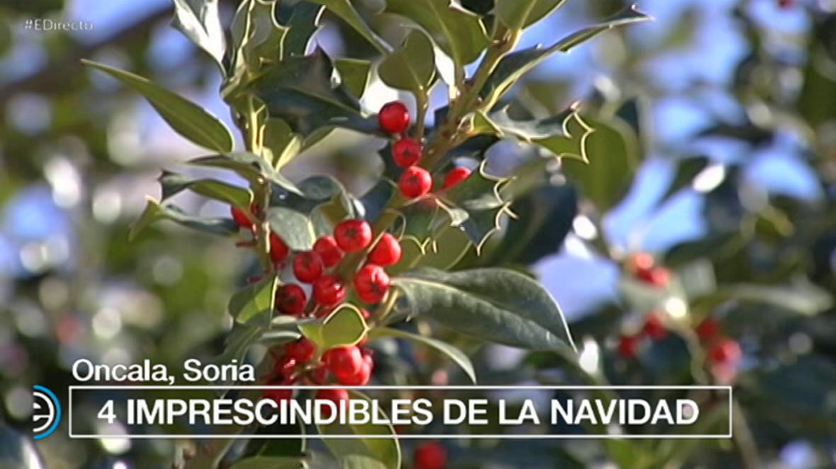 España Directo - 05/12/17 - ver ahora