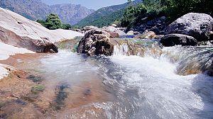 Aguas salvajes