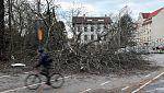 El temporal de frio y viento causa estragos en el centro de Europa