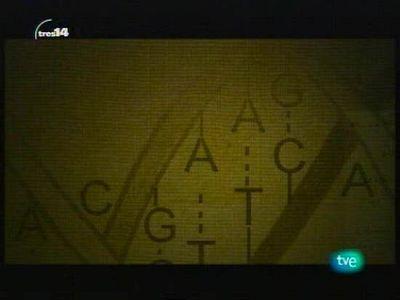 Los mecanismos genéticos de la evolución (Darwin)
