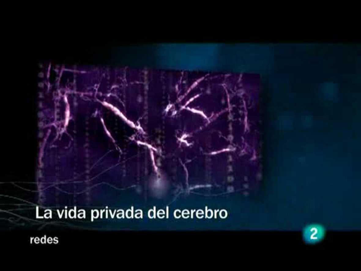Redes (31/05/09) :  La vida privada del cerebro.