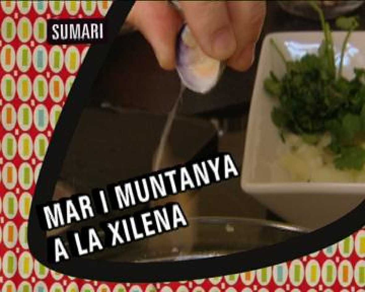 La cuina. Xile: Mar i muntanya