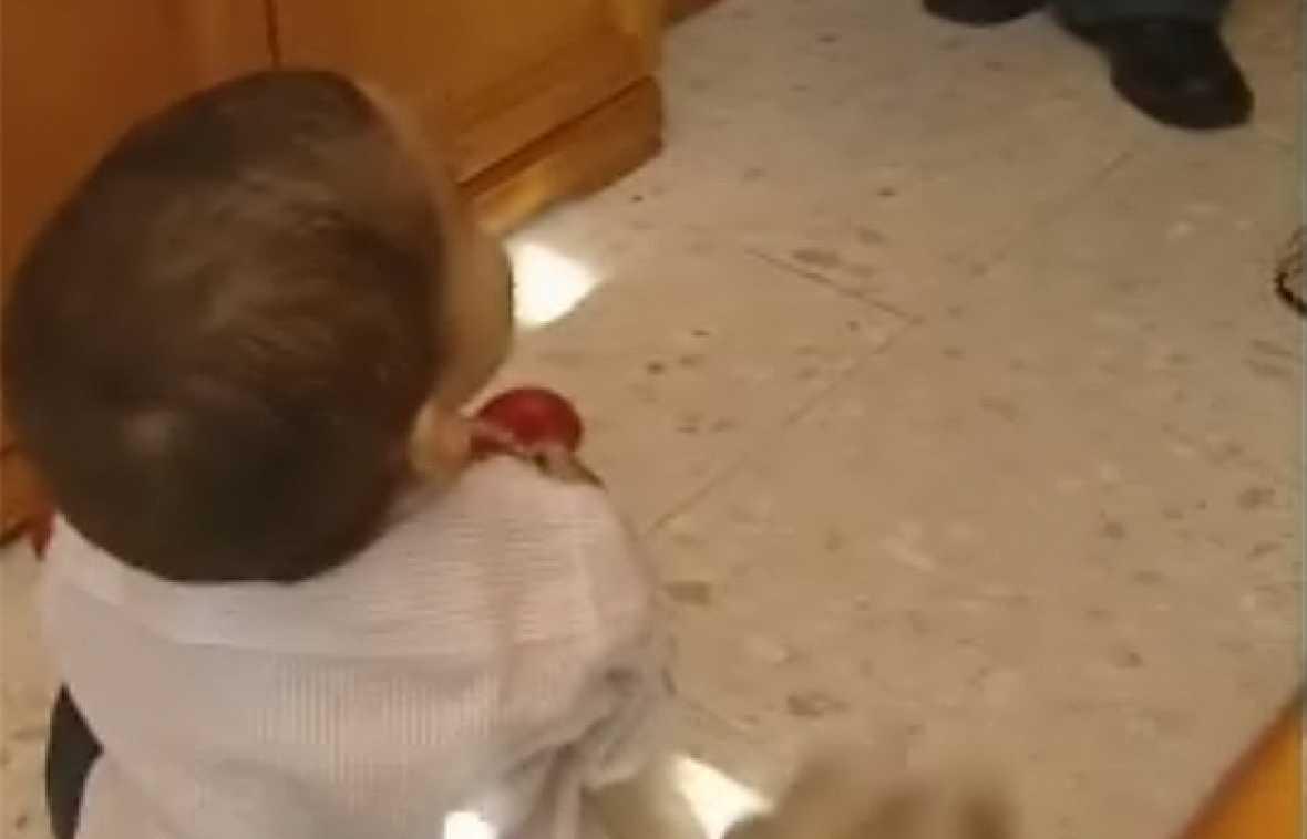 """Javier Puertas, el niño al que conocimos como el """"bebé medicamento"""", cumple un año. Fue seleccionado genéticamente para salvar la vida de su hermano a través del trasplante de células del cordón umbilical. Sus padres aseguran que si hubieran hecho c"""