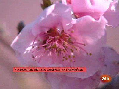 España en 24 horas (17/03/10)