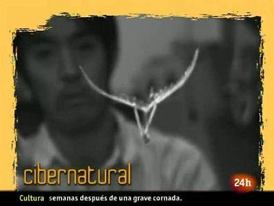 NATURAL: la primavera se va con una mariposa-robot. (04/06/10)
