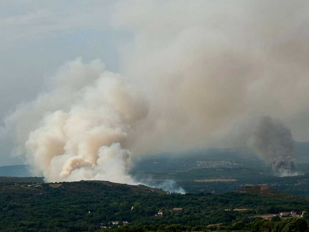 Menos incendios y más pequeños en 2010