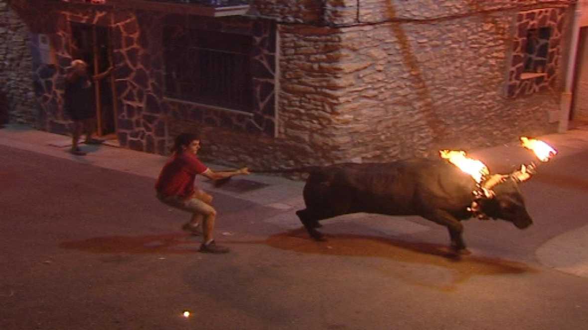 El Escarabajo Verde (22/10/10): Los otros toros catalanes