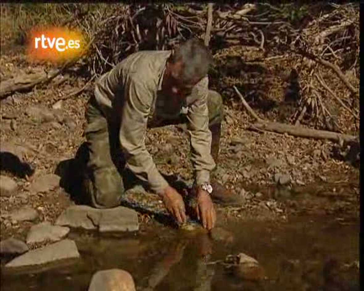 Marcos Rodríguez Pantoja, el niño salvaje de Sierra Morena, nos explicaba como pescaba  durante su etapa de aislamiento en la Sierra de Cardeña